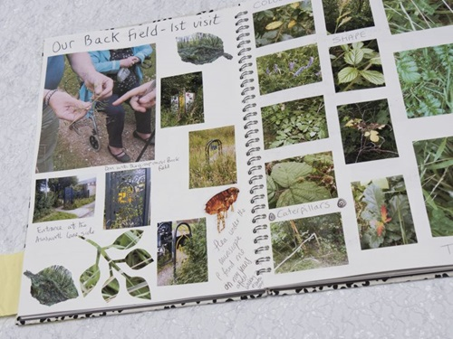Scrapbook containing several clippings plants, trees and nature. There are handwritten notes in between the clippings.